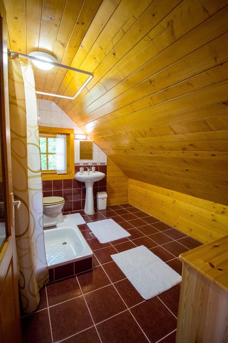 Körös-parti szállás - fürdőszoba